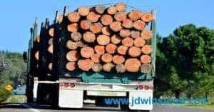 loggers insurance