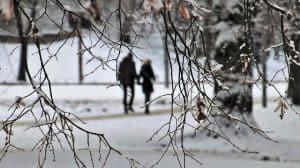 Winterspaziergang in Senmotic Blizzard Schuhen.