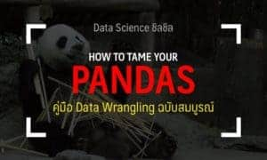 pandas python guide thai data science
