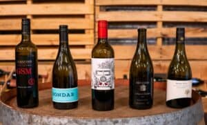 Winepilot Grenache Shootout
