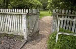 lawn-care-guys-left-the-fence-open
