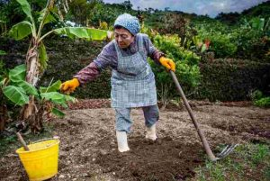 La population du Japon est le pays qui compte le plus de centenaires sur la planète.