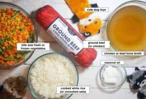 how-to-make-easy-homemade-dog-food-in-an-instant-pot-ingredients-1024x695
