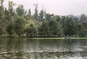 come to rest at Kodaikanal lake