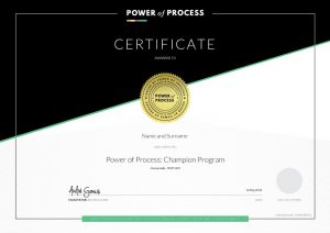Mock up of the POP Champion certificate