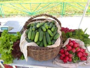 Сельско-хозяйственные ярмарки в Сергиево-Посадском районе