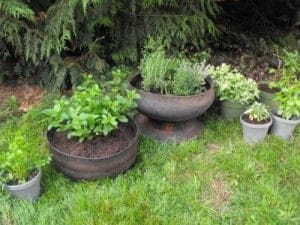 tire planters in the garden