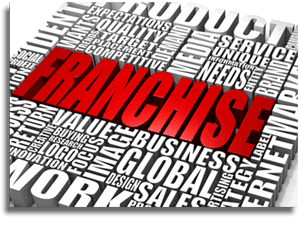 What are the best franchise opportunities: owning a single franchise or becoming an Area Representative? 1