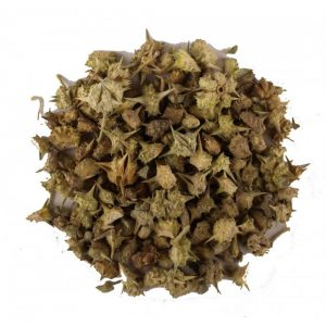 Tribulus Terrestris Benefits