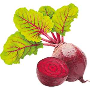 Beetroot only