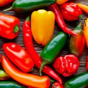 Chili Titelbild