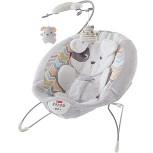 Fisher-Price Sweet Snugapuppy Bouncer
