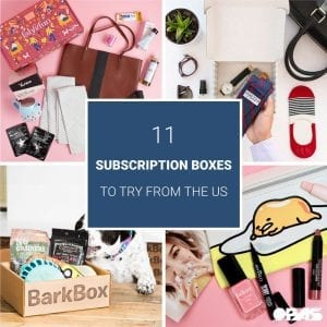 Subscription-Boxes-You-can-only-Get-in-the-US