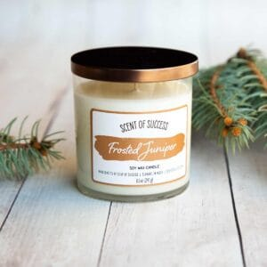Soup of Success Frosted Juniper Soy Candle