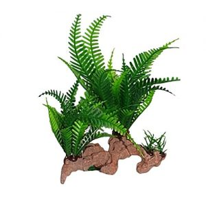 Fern on Drift Wood Aquarium Ornament
