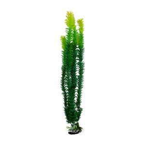 Green Aquarium Plant with Base 18 Inch Tall