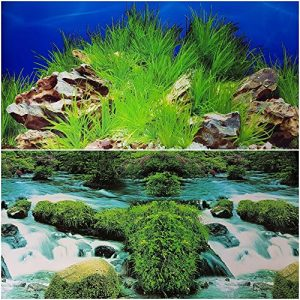 "Double Sided Aquarium Background 19"" x 24"", Deep in River or Rock Plant Decor"
