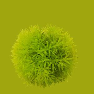 Artificial Moss Ball 3 Inch Diameter