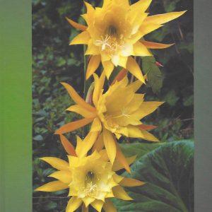 Epiphyllum book # 1