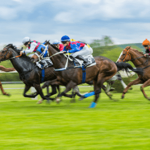Eventify Virtual Horse Racing event OAG 5