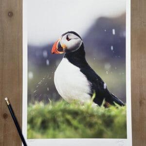Outer Hebrides Art Print
