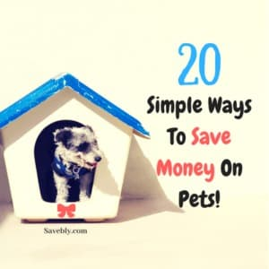 We love our pets to death but we also know that they can get pretty EXPENSIVE!! It's the truth but there are ways how you can save money on your pet and keep that CASH in your pocket! Whether you have a dog, cat, bird, hamster, etc... Check out this AMAZING post where you can find 20 SIMPLE WAYS TO SAVE MONEY ON PETS! Don't overpay for your little family member. Save your money and use it wisely! This post is a life changer!! #money #finance #pets #animals