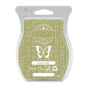 AMAZON RAIN SCENTSY WAX BAR