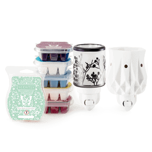 Perfect Scentsy - €29 Warmers