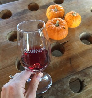 Finger Lakes Wineries To Visit For Red Wine | Winetraveler.com