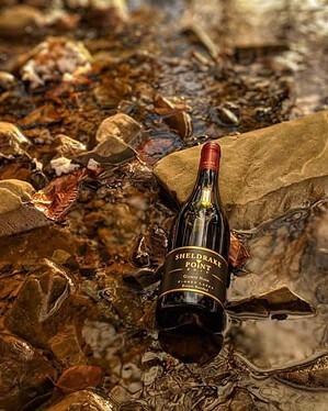 Sheldrake Point Gamay Wine