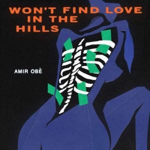 Won't Find Love in the Hills - Amir Obè