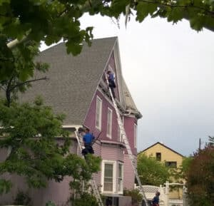 Bat Removal from Victorian House