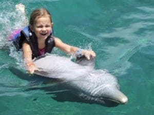 swimming with dolphins, dolphin cove, jamaica, ocho rios, dolphin cove jamaica, swim with dolphins, ocho rios jamaica