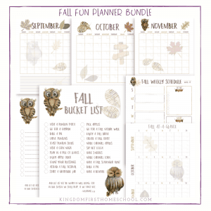 Printable Fall Fun Planner
