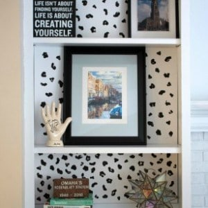 DIY Animal Print Bookcase Background