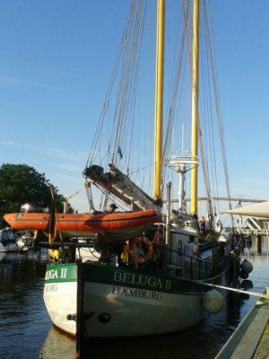 "Das Greenpeace-Schiff ""Beluga II"" in Greifswald. Foto von Greenpeace Greifswald-Stralsund, CC-BY-NC."