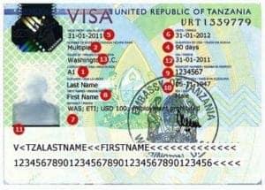tanzania visa india