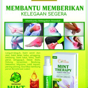 Penawar Sendi Mint Theraphy 2 Botol