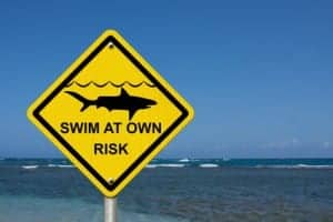 Use caution when swimming because sharks are present