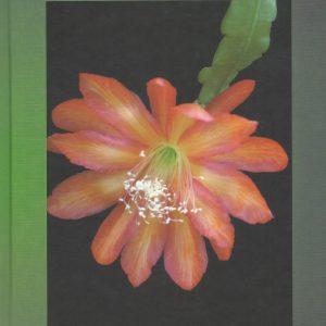 Epiphyllum book # 2