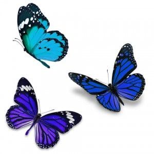 Livsglæde. Dansende sommerfugle