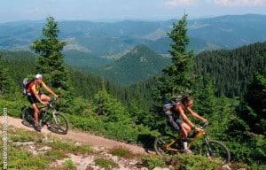 Radtour durch Wälder