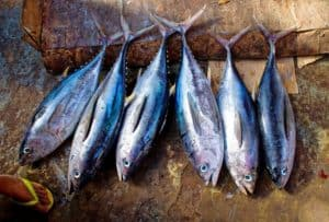 3 reasons why you should eat less fish