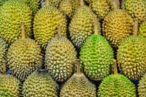 Durian – why some love it and others hate it