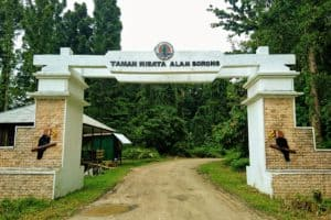 Entrance gate to the forest area Taman Wisata Alam Sorong