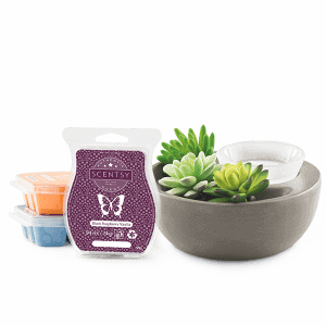 Scentsy System - €59 Warmer