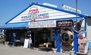 spongeorama sponge factory image