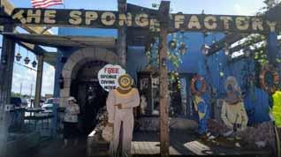 The Sponge Factory