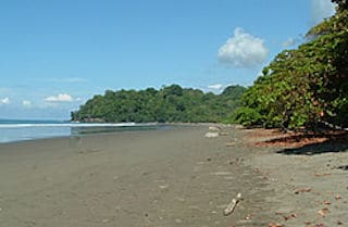 Playa Hermosa (Dominical)