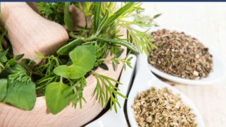 Easy-to-Grow Herbs Ideal for Small Spaces